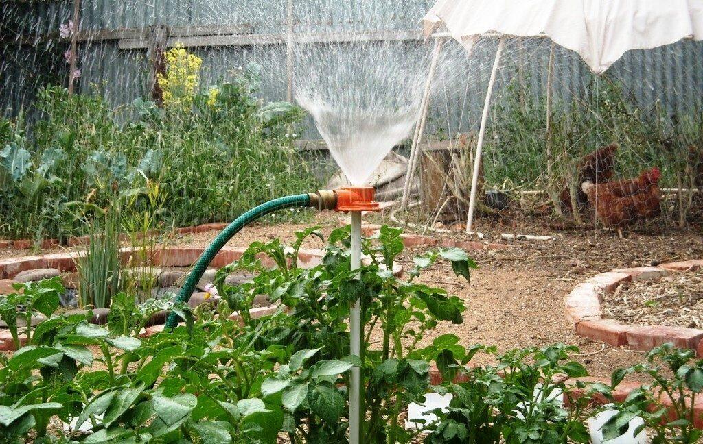 это поливочная система для огорода своими руками фото многолетних декоративно-цветущих кустарников